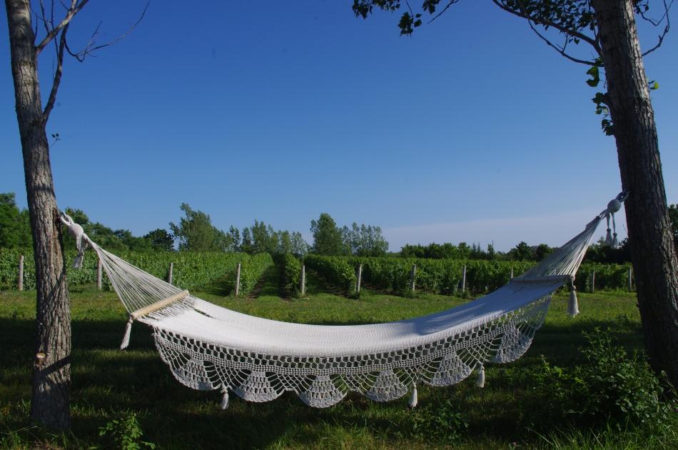 iconic hammock