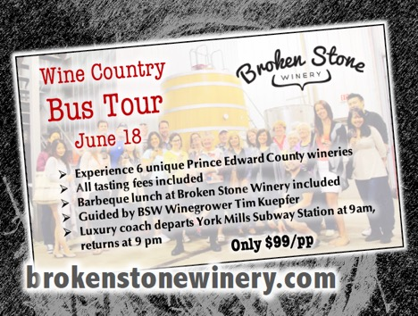 bus tour